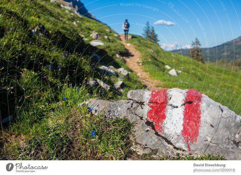 Wanderparadies Mensch Himmel Natur Ferien & Urlaub & Reisen Pflanze Sommer Landschaft Erholung Wolken Berge u. Gebirge Frühling Herbst Wege & Pfade Tourismus