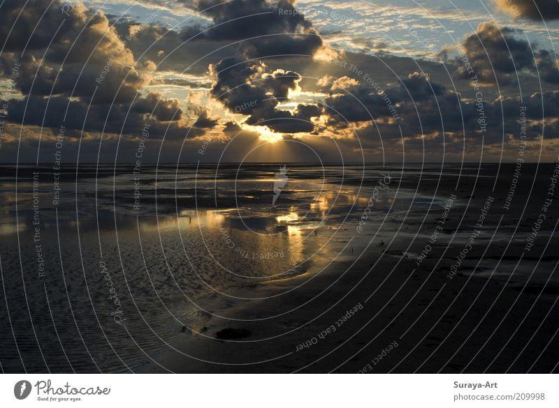 Zwischen Himmel und Meer Strand Insel Umwelt Natur Urelemente Erde Sand Wasser Wolken Sommer Schönes Wetter Küste Nordsee Erholung ästhetisch Ferne