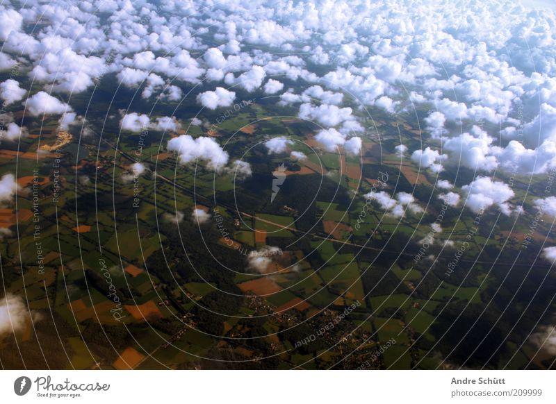 Über den Wolken Landschaft Feld Luftverkehr Flugzeugausblick fliegen hoch blau gelb grün Fernweh Angst Ferne Wolkenhimmel luftig oben Aussicht Farbfoto