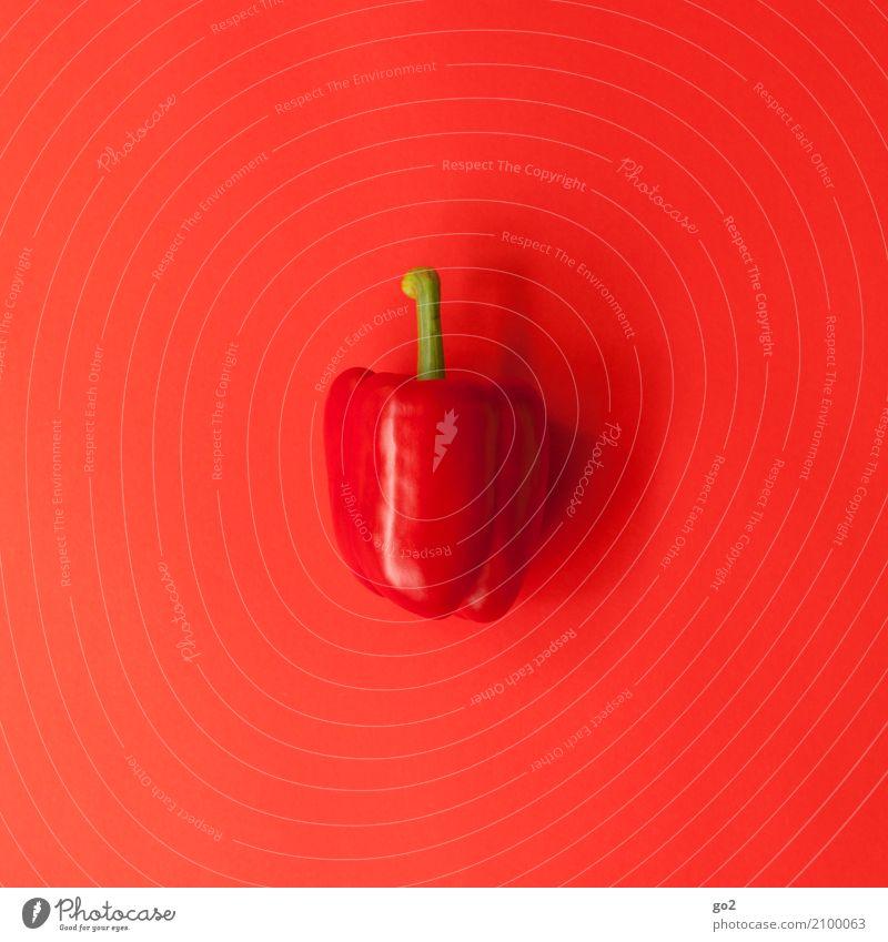 Rote Paprika Gesunde Ernährung rot Essen Gesundheit Lebensmittel ästhetisch frisch einfach lecker Gemüse Bioprodukte Vegetarische Ernährung Diät Vitamin