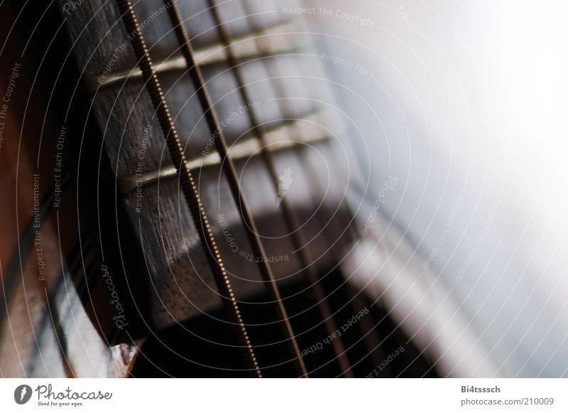 Schlummernde Muse Freizeit & Hobby musizieren Musik Gitarre Saite Saiteninstrumente Holz Metall alt nah weiß Freiheit Farbfoto Innenaufnahme Nahaufnahme
