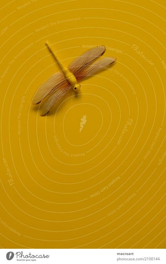 Libelle Insekt künstlich Dekoration & Verzierung rot gelb Sommer Frühling einzeln liegen Single Tier Flügel