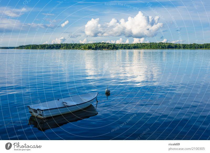 Schärengarten an der schwedischen Küste vor Stockholm Erholung Ferien & Urlaub & Reisen Tourismus Insel Natur Landschaft Wolken Baum Ostsee Wasserfahrzeug blau