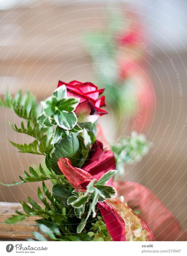 wann kommt die braut? schön Gefühle Glück Romantik Rose Blumenstrauß Vorfreude Treue Grünpflanze Freude Feste & Feiern