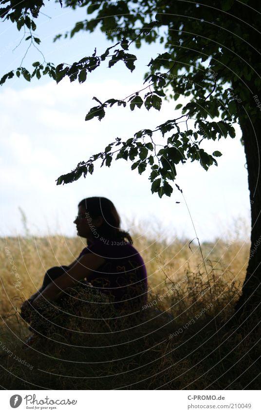 gedankenverloren Mensch Frau Himmel Natur Baum Sommer Wolken Einsamkeit Erwachsene Erholung Wiese Gefühle Gras Kopf Traurigkeit träumen
