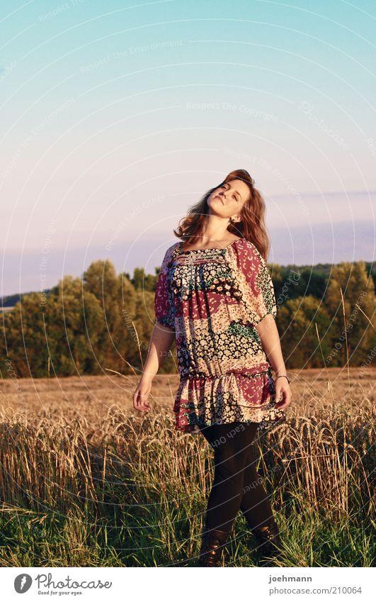 Blick nach Oben Mensch Jugendliche schön Himmel Baum Sonne Sommer ruhig Erholung Herbst feminin Glück Denken Zufriedenheit Feld