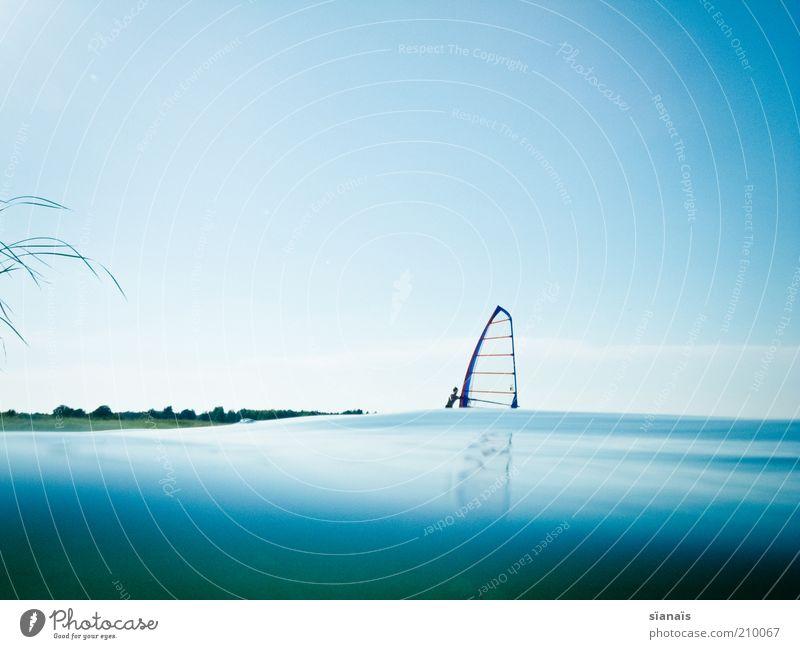 wellensurfing Mensch Wasser blau Sommer Freude Ferien & Urlaub & Reisen ruhig Sport See Zufriedenheit Wellen Umwelt Tourismus Freizeit & Hobby Lebensfreude