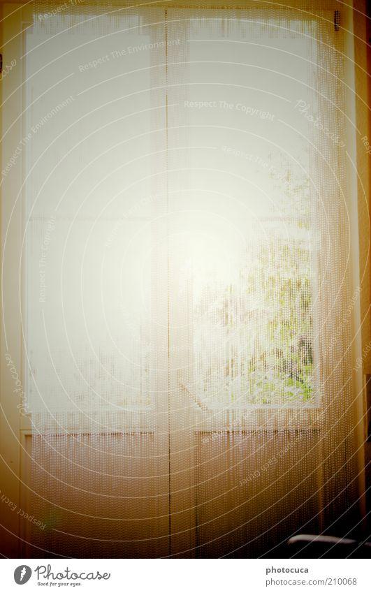 Fenster Perspektive Aussicht Sonnenstrahlen Strahlung Schönes Wetter Balkontür Tür Lichtstrahl Beleuchtung Lichtschein Vorhang Glasperlenvorhang Fensterblick