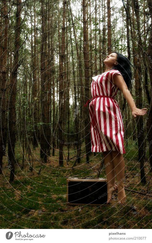 Loslassen feminin Junge Frau Jugendliche Erwachsene Leben 1 Mensch Natur Erde Himmel Sommer schlechtes Wetter Pflanze Baum Moos Wald Bekleidung Rock Stoff