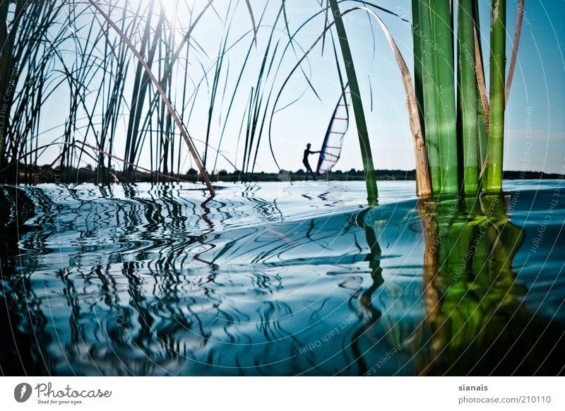 buschfunk Mensch Natur Wasser Ferien & Urlaub & Reisen Pflanze Sommer Umwelt Sport Gras See Wellen maskulin Tourismus Lifestyle Coolness Idylle