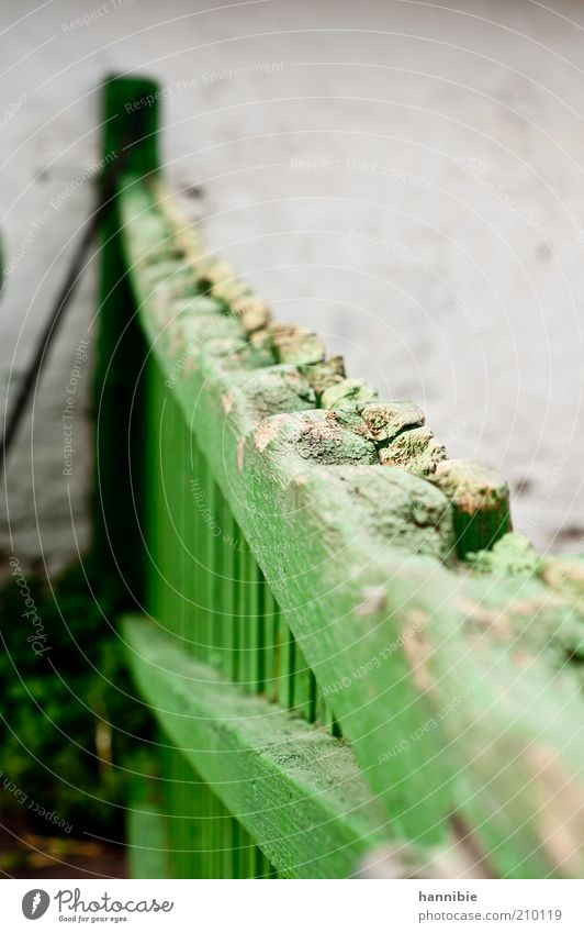 fancy fence grün Holz grau Stein geschlossen Sicherheit Zaun Kontrolle Barriere schließen ländlich verwittert Dinge Stall verrotten Pferch