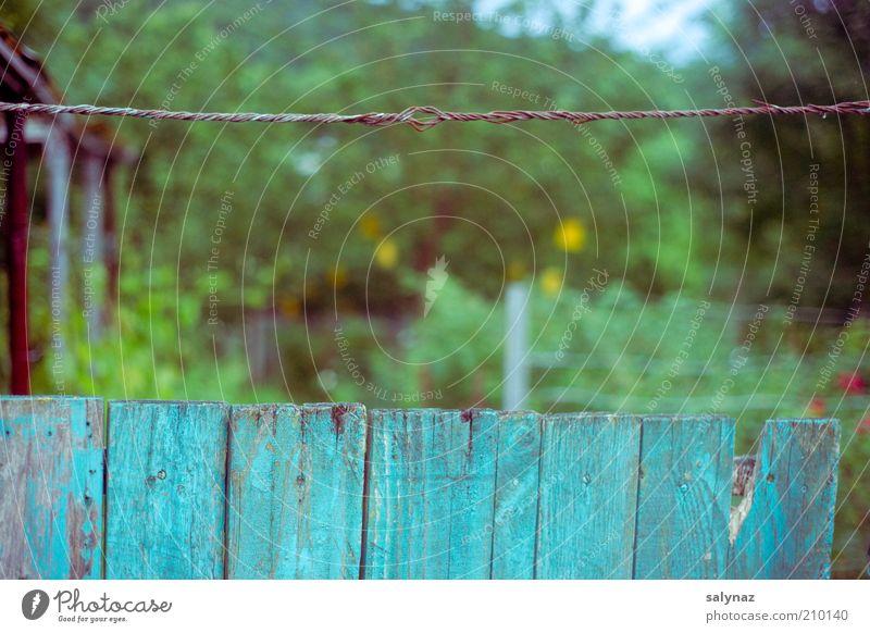 gartenzeit grün blau Sommer Garten Perspektive retro einfach Grenze trashig Grundbesitz Unschärfe Bildausschnitt Begrenzung Schrebergarten Drahtseil