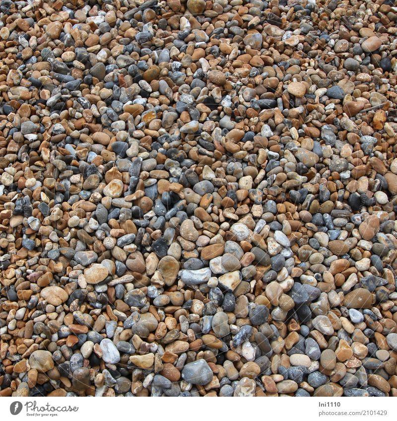 Kiesel blau schön weiß Meer rot Strand Hintergrundbild Küste Fuß Stein grau braun einzigartig Suche Sammlung Nordsee