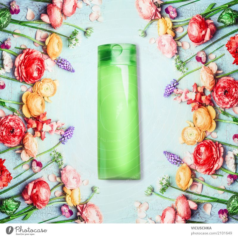 NaturKosmetik oder Schönheit aus der Natur Pflanze schön grün Blume Blatt Blüte Gesundheit Stil Design Wellness Körperpflege Duft Verpackung Creme