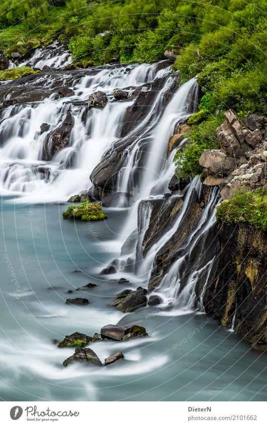 Im Fluss II Umwelt Landschaft Sommer Wetter Schönes Wetter Baum Gras Felsen Flussufer Bach Wasserfall braun grün türkis weiß Island Stein Sträucher
