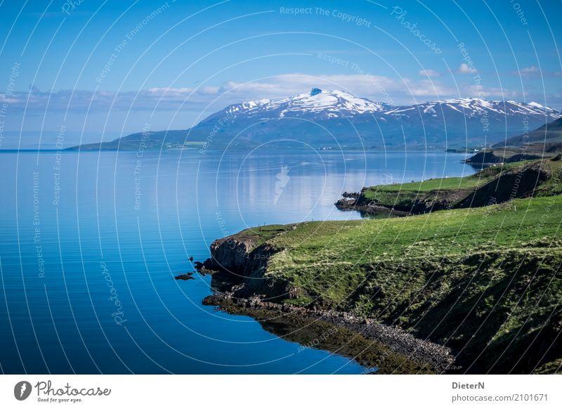 Fjord Umwelt Natur Landschaft Urelemente Luft Wasser Himmel Wolken Sommer Wetter Schönes Wetter Gras Felsen Berge u. Gebirge Gipfel Schneebedeckte Gipfel Vulkan