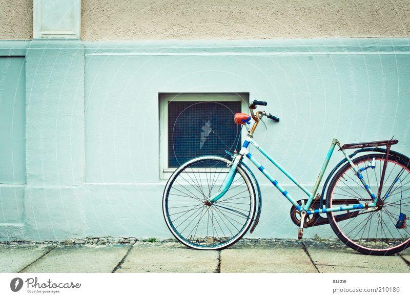 Eierfeile alt Haus Fenster Wand Mauer Fahrrad authentisch kaputt retro verfallen türkis Verfall Rost Fahrradrahmen Abnutzung Schrott
