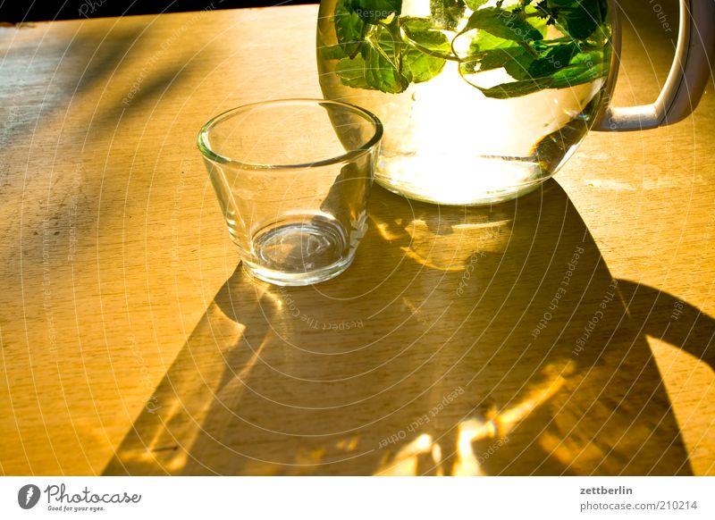 Zitronenmelisse Natur Wasser Pflanze Sommer ruhig Leben Erholung Glas Tisch trinken Kräuter & Gewürze Getränk Erfrischung Licht Kannen August