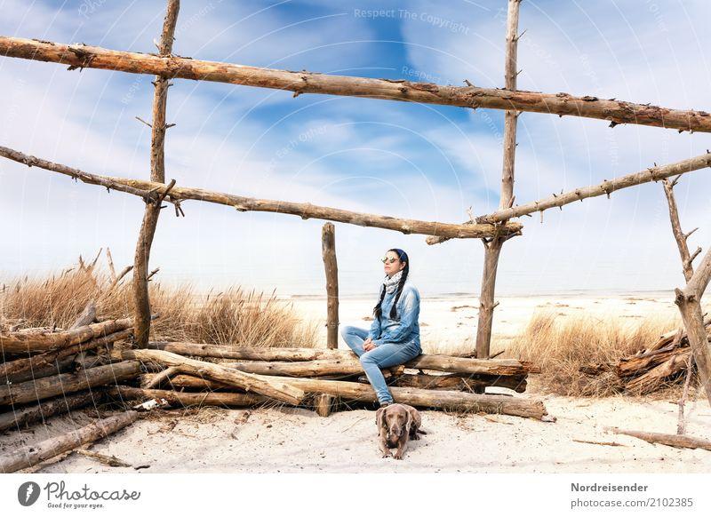 Meer genießen Frau Mensch Natur Ferien & Urlaub & Reisen Hund Sommer Landschaft Tier ruhig Strand Erwachsene Leben Lifestyle feminin Gras