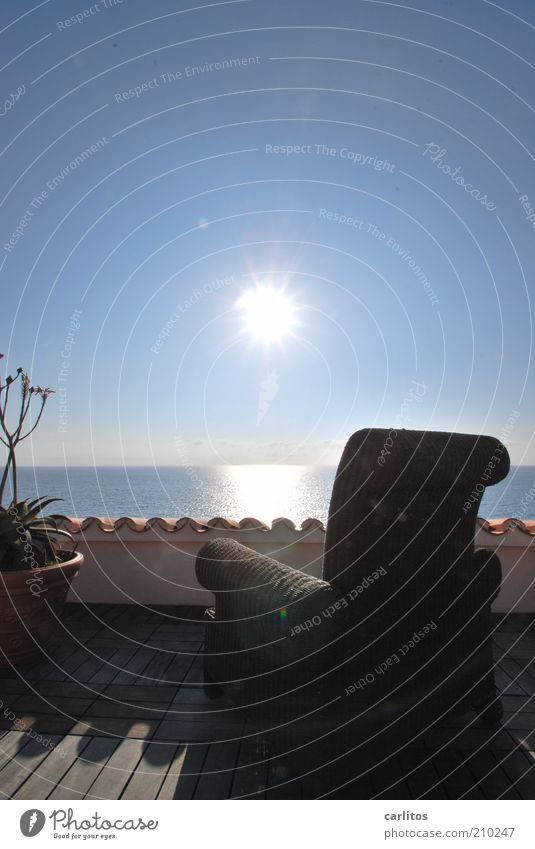Wochenend und Sonnenschein ..... Wolkenloser Himmel Horizont Sommer Schönes Wetter Pflanze Agave Meer Haus Traumhaus Terrasse Dach Erholung glänzend leuchten