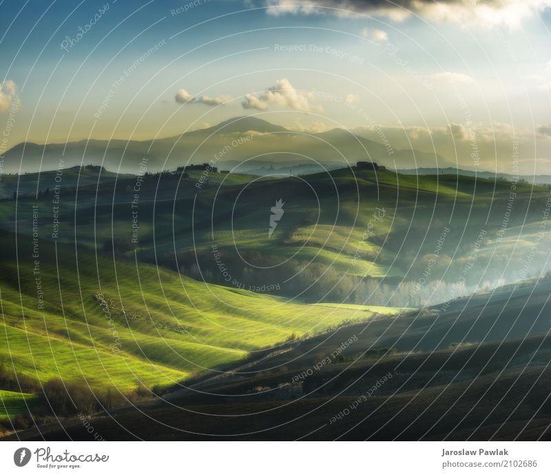 Schafe, die in der Sonne auf den Feldern weiden lassen. Natur Ferien & Urlaub & Reisen Sommer schön grün weiß Baum Landschaft Wolken Tier Berge u. Gebirge