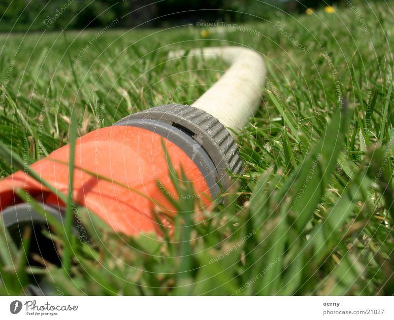 Gartenschlauch Wasser Wiese Park Rasen Freizeit & Hobby Schlauch Wasserschlauch