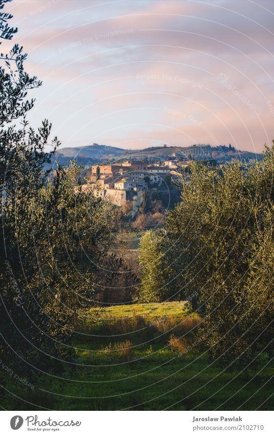 Panoramablick auf die San Giovanni d'Asso in der Toskana. Himmel Ferien & Urlaub & Reisen alt Sommer Stadt schön grün Landschaft Haus Architektur Straße Gebäude