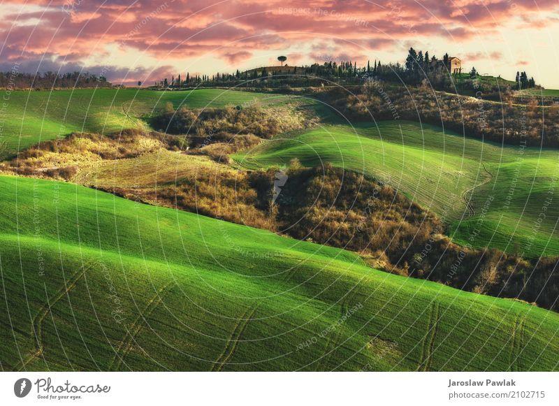 Schöne Felder, Hügel von Toskana, Italien schön ruhig Sommer Haus Umwelt Natur Landschaft Pflanze Himmel Wolken Horizont Baum Gras Wiese Straße grün Idylle
