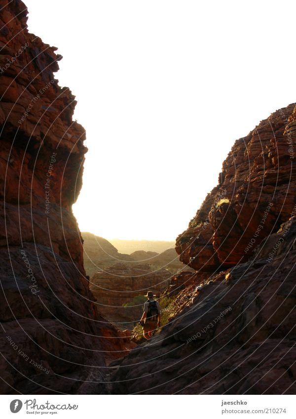 Indy 1 Mensch wandern ästhetisch hell Tatkraft erleben Natur Perspektive Risiko Surrealismus Wege & Pfade Ferne Abenteuer Schlucht Kings Canyon gigantisch