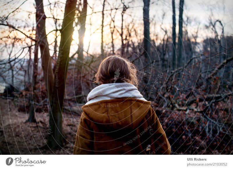 entwurzelt III Mensch Natur Ferien & Urlaub & Reisen Jugendliche Junge Frau Baum Landschaft ruhig Ferne Winter Wald 18-30 Jahre dunkel Erwachsene gelb