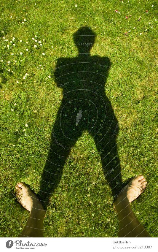 Wiese, schon wieder Mensch Fuß 1 stehen Juni Rasen Gras vertikal Schatten schwarz grün grasgrün standhaft Standort Zehen Barfuß Schienbein Mann Sommer
