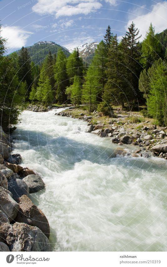 Wald am Fluss Himmel Natur Wasser grün blau Landschaft Stein Felsen natürlich Tanne Bach Nadelbaum Wildnis Landschaftsformen