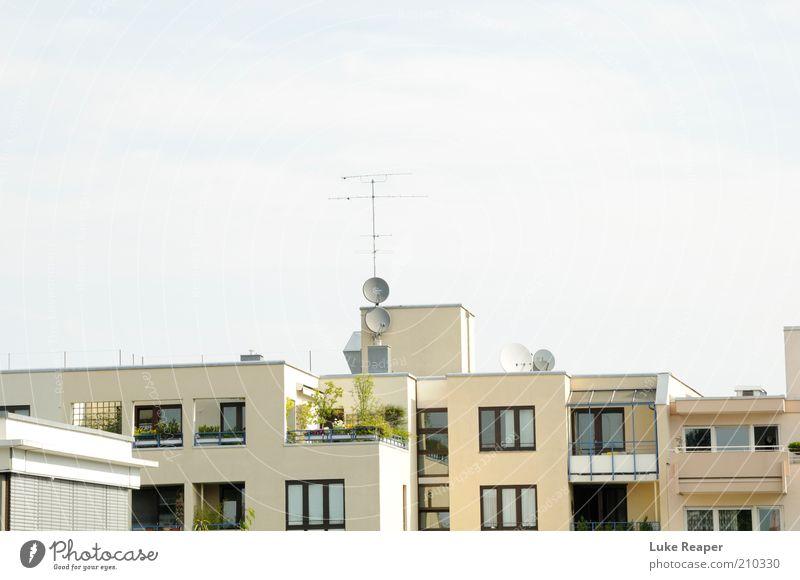 Die Dächer von München Himmel weiß blau Pflanze Sommer Haus Stein Gebäude Architektur Dach Balkon Terrasse Antenne bevölkert Häuserzeile Satellitenantenne