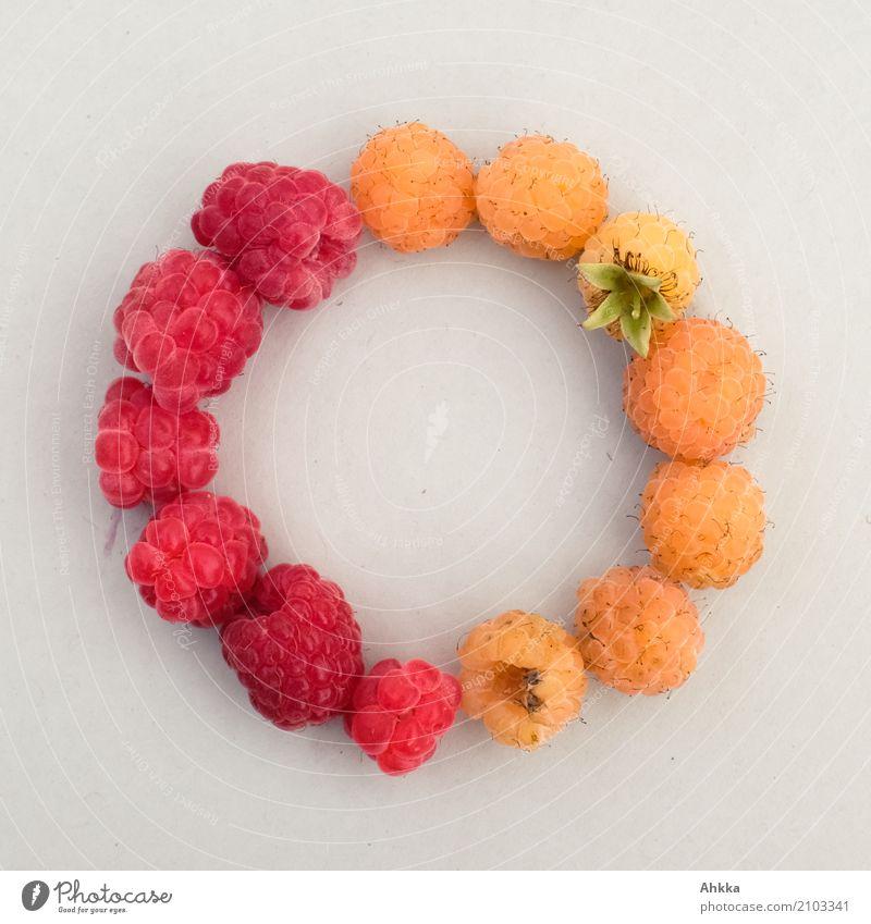 Sommersymbol Farbe rot gelb Zusammensein Freundschaft Frucht Kreativität Lebensfreude Ewigkeit rund Sicherheit Zusammenhalt Vertrauen Bioprodukte Konzentration