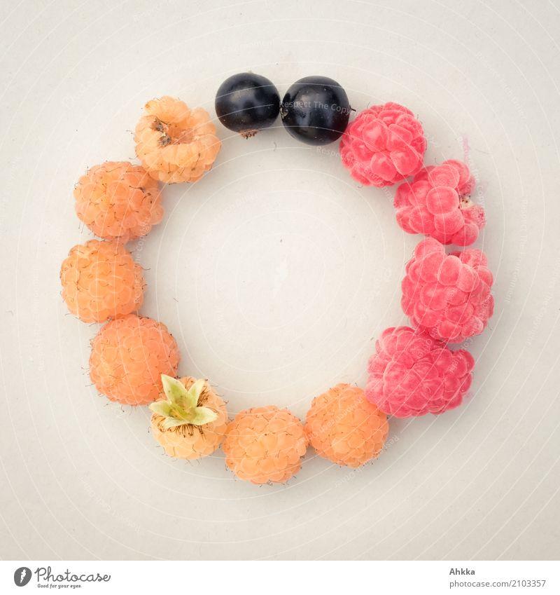 Länderkreis Frucht Bioprodukte Vegetarische Ernährung Slowfood Fingerfood Sommer Deutschland Fahne Kreis rund gold rot schwarz Vertrauen Sicherheit Zusammensein