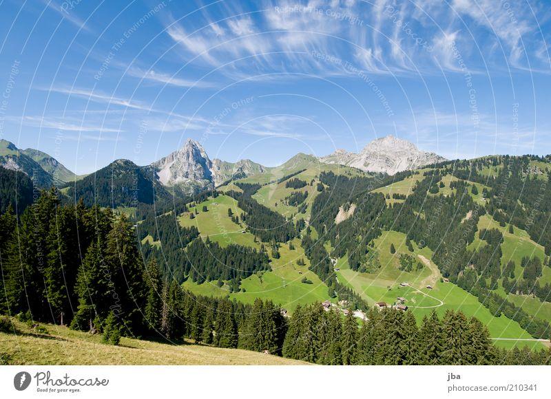 Heimat! Himmel Natur alt schön Baum Pflanze Ferien & Urlaub & Reisen Sommer Wolken Wald Umwelt Landschaft Berge u. Gebirge Freiheit Holz Freizeit & Hobby