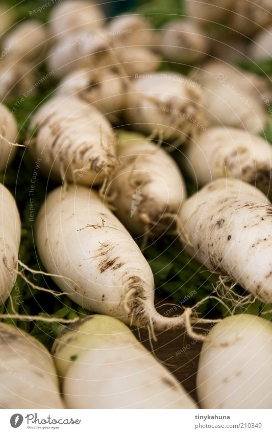 Rettich Lebensmittel Gemüse Bioprodukte Vegetarische Ernährung Marktplatz wählen verkaufen einfach frisch Gesundheit gut lecker viele grün weiß Qualität
