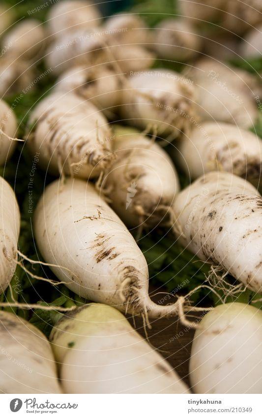 Rettich weiß grün Gesundheit Lebensmittel frisch gut viele einfach Gemüse lecker Bioprodukte verkaufen wählen Marktplatz Wurzel Qualität