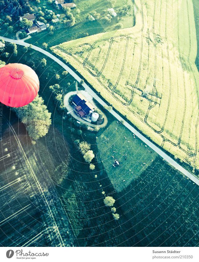 bunte Welt Natur rot Haus Straße oben Wege & Pfade Landschaft Feld Straßenverkehr Luftverkehr bedrohlich Asphalt Dorf Ballone Verkehrswege Weide