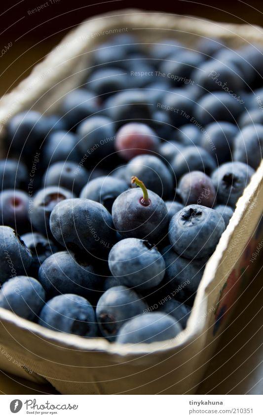 Eine mit Stil Lebensmittel Frucht Blaubeeren Bioprodukte wählen frisch lecker süß blau Vorfreude genießen Farbfoto Innenaufnahme Nahaufnahme Menschenleer