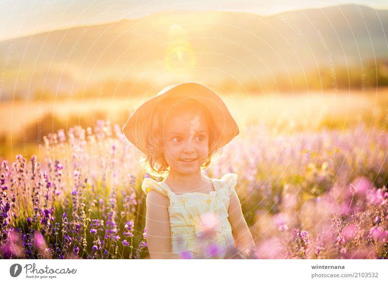 goldenes Licht Kind Mädchen Schwester 1 Mensch 3-8 Jahre Kindheit Natur Landschaft Erde Sonne Sonnenaufgang Sonnenuntergang Sommer Feld Kleid Hut Spielen frei