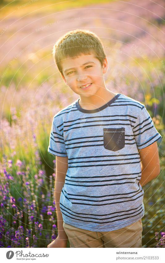 Lavendel Junge Lifestyle Mensch Bruder 1 8-13 Jahre Kind Kindheit Natur Landschaft Sonne Sonnenlicht Sommer Schönes Wetter Feld Lavendelfeld T-Shirt Hose