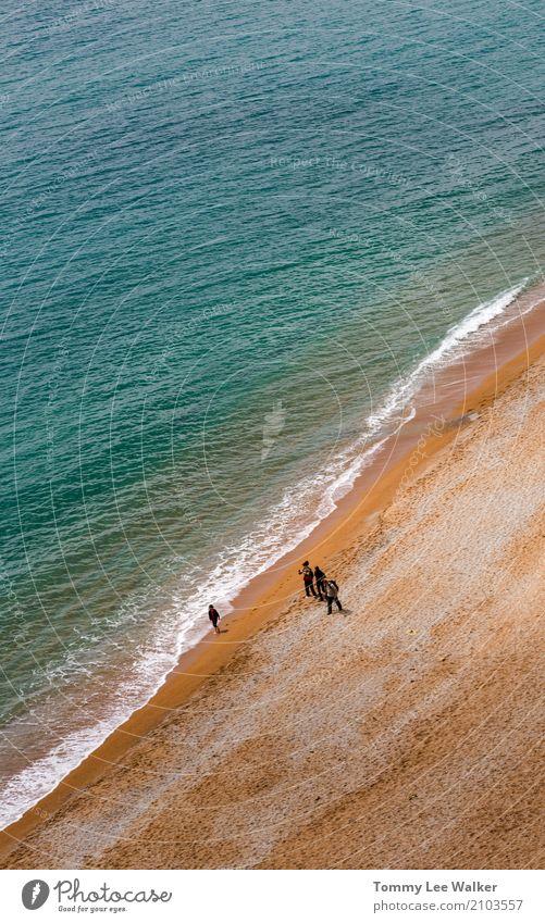 Gruppe Freunde gehen auf den Strand Frau Natur Ferien & Urlaub & Reisen Mann Sommer schön Meer Freude Erwachsene Lifestyle Wege & Pfade Glück Menschengruppe