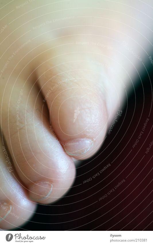Baby Toes Mensch Fuß natürlich Kleinkind Barfuß Zehen 0-12 Monate Makroaufnahme
