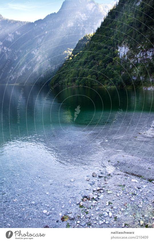 Königssee Umwelt Natur Landschaft Wasser Sommer Alpen Berge u. Gebirge Seeufer blau grau grün Farbfoto Außenaufnahme Menschenleer Tag Licht Sonnenlicht