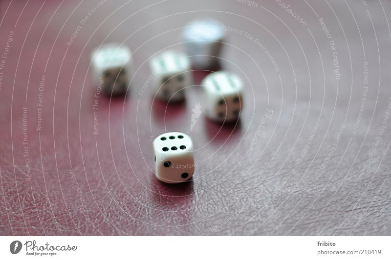 Volltreffer weiß Spielen Glück Würfel Erfolg Ziffern & Zahlen Spielzeug Zeichen harmonisch 6 eckig Freizeit & Hobby Experiment Glücksbringer Glücksspiel