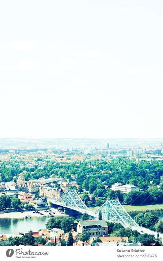 Blaues Wunder Stadtrand Skyline Haus Brücke Sehenswürdigkeit Wahrzeichen historisch Blasewitz Dresden Sachsen Sightseeing Weißer Hirsch Baum grün Elbe