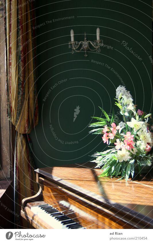 klassisch jazz elegant Musik Klavier Sonnenlicht Blume Blumenstrauß Vorhang ästhetisch Romantik Stimmung Farbfoto Innenaufnahme Klaviatur Flügel altmodisch