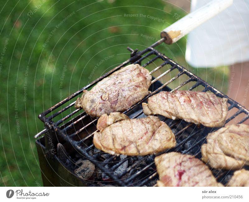 Medium Lebensmittel Fleisch Steak Grillfleisch Ernährung maskulin 1 Mensch Grillkohle Grillrost lecker saftig grün Grillen Grillsaison roh Farbfoto