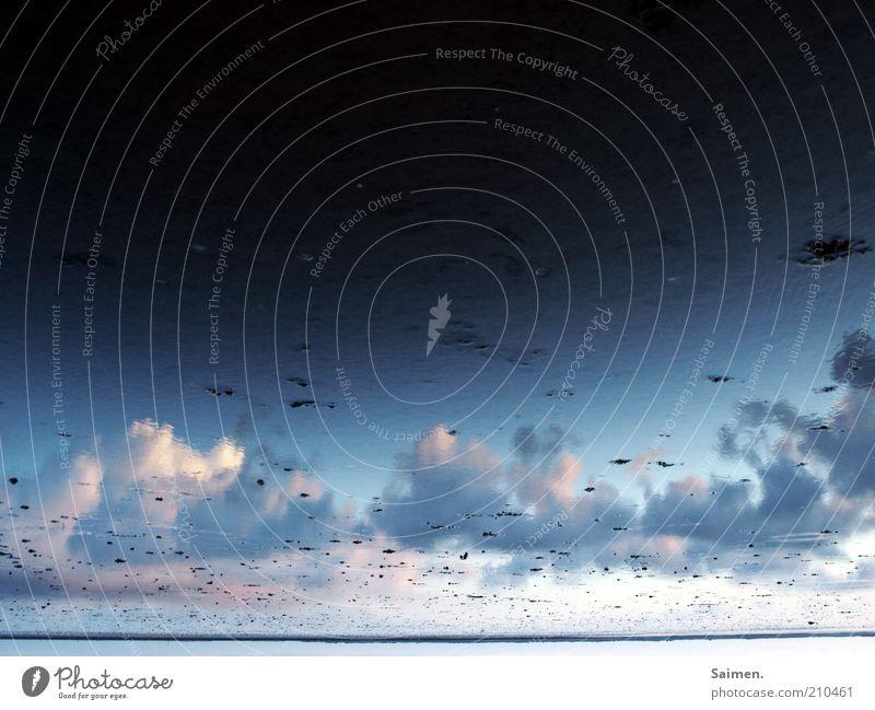 wattwolken Umwelt Natur Landschaft Luft Wasser Himmel Wolken Sommer Klima Wetter Schönes Wetter Küste Strand Nordsee Meer schön Idylle ruhig Erholung